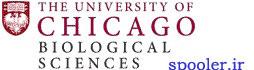 Chicago Uni data theft