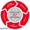 روشهای توسعه DLP